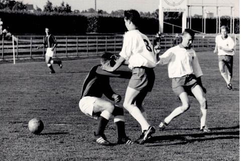 TuPy TaPa 1966